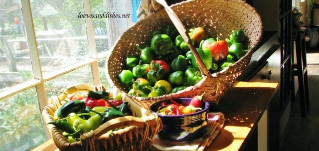 Basket of peppers in the sunshine by a window