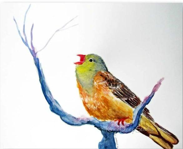 Little Bird with Arugula Caprese Salad