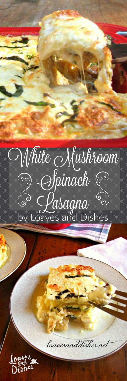 This recipe for White Mushroom Spinach Lasagna is the perfect dish for guests - vegetarian or not!  So filling and cheesy.  Easy to make. Delight your friends!