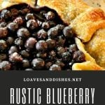 Rustic Blueberry Galette