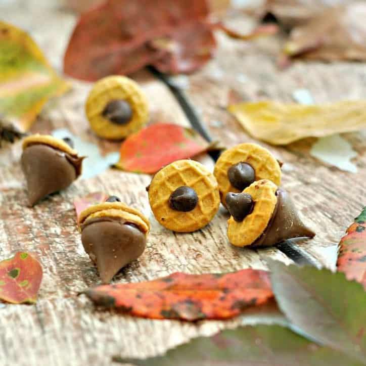 Nutella Acorn Kisses @ www.loavesanddishes.net