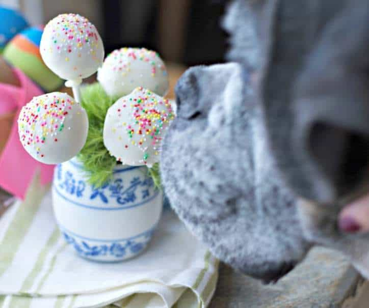 Easter Cake Pops www.loavesanddishes.net