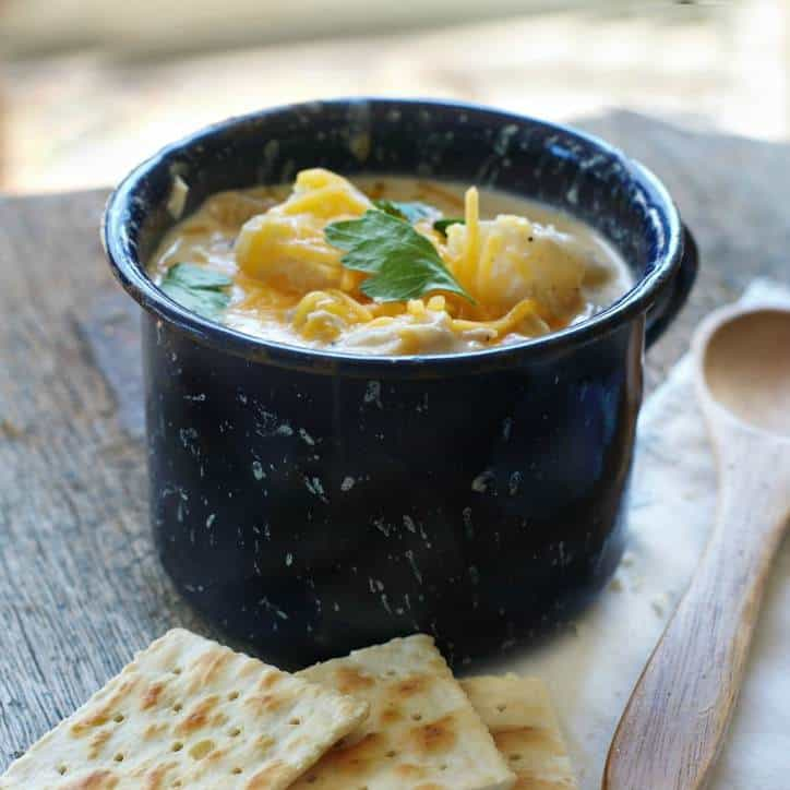 Crockpot Cheesy Potato and Chicken Soup
