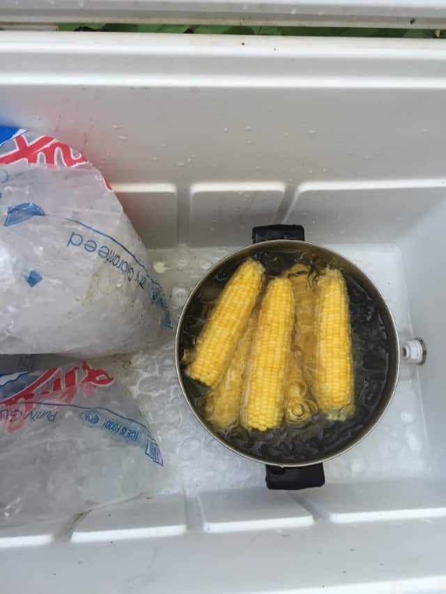 large pot of ice with corn cobs in cooler after being blanched