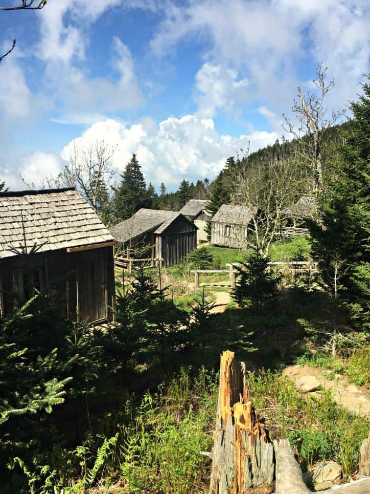 A photo of the small cabins that make up the Mt. Leconte base camp. Beautiful blue skies