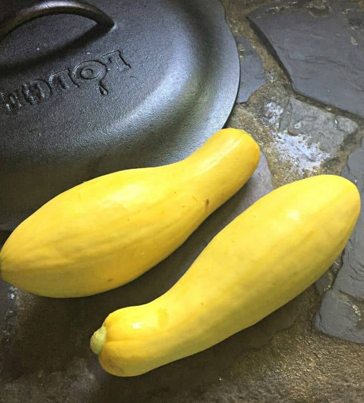 Two yellow squash sitting on a stone counter with cast iron pan lid