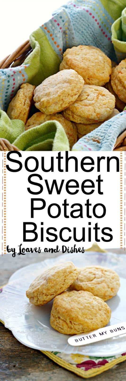 These delicious sweet little Southern Sweet Potato Biscuits are perfect for guests, parties or just yourself! Southern, old fashioned, easy, simple, healthy, like the pioneer woman or Paula Deen would make