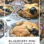 Blueberry Mini Muffins with a Crumble Top