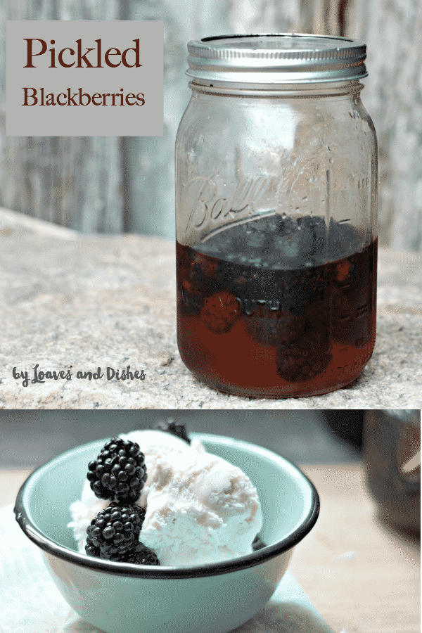 The best treat you will ever add to something creamy like ice cream or goat cheese or...  Pickled Blackberries!  Homemade and so simple!  #pickledblackberries #blackberry #recipe