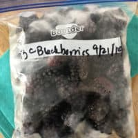 quart size bag of frozen blackberries